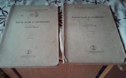 Szocreál Magyar Állam-és Jogtörténet 2 kötete (1962)