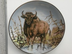 Fali tányér, dísznek dísztányér, bivaly, bölény!