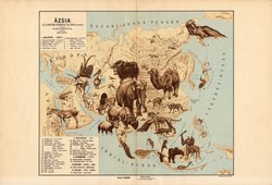 Ázsia állatföldrajzi térkép 1928, magyar nyelvű, 28 x 41 cm, állat, hal, madár, emlős, gerinces