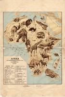 Afrika állatföldrajzi térkép 1928, magyar nyelvű, 28 x 41 cm, állat, hal, madár, emlős, gerinces