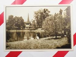 Régi képeslap levelezőlap - Az állatkerti tó partján - A székesfővárosi állatkert kiadása 1910-es év