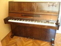 Páncéltőkés Pianino Lirika
