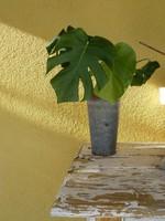 Virágtartó rusztikus bádog lemezből asztalra vagy fellógatva 24 cm magas