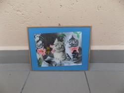Régi üvegezett cicás fotó 24*32 cm
