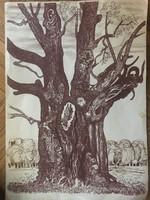 Öreg fa - Németh Endre gyönyörű tusrajza