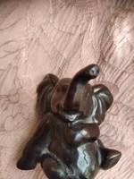 Kis elefánt pici sérüléssel