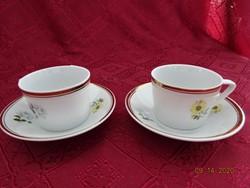 Hollóházi porcelán kávéscsésze + alátét, sárga virágos. Alátét átmérője 10,5 cm.