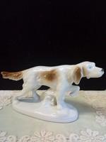 Lippelsdorfi porcelán kutya
