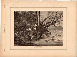 Libapásztorok, fametszet 1881, metszet, nyomat, 18 x 25 cm, Ország - Világ, újság, liba, pásztor