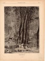 Erdő részlet, fametszet 1881, metszet, nyomat, 22 x 30 cm, Ország - Világ, újság, fa, szarvas