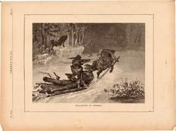 Meglepetés az erdőben, fametszet 1881, metszet, nyomat, 18 x 25 cm, Ország - Világ, farkas, szán