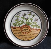 Gyógynövényes tányér (Thymus serpyllum-keskenylevelű kakukkfű)