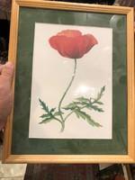 Virág ábrázolás, 25 x 20 cm-es, vegyestechnika, lakberendezéshez.