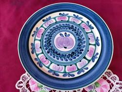Sz1 Villeroy & Boch fajansz kézzel festett tányér 23 cm