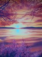 Olajfestmény: Őszi naplemente