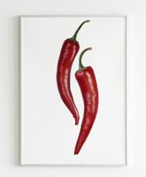 Pirospaprikák, akvarell, 17x27