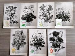Erdők mezők virágai 1973!