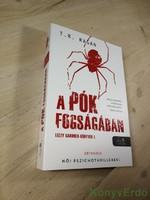 T. R. Ragan: A pók fogságában / Lizzy Gardner-könyvek 1.