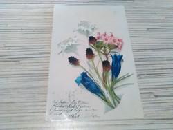 Antik Üdvözlő képeslap.(1900).