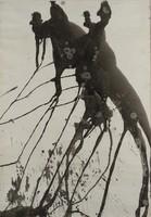 Vinkler László - 60 x 42 cm tus, papír keretezve