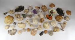 1C454 Tengeri kagyló csiga és ásvány gyűjtemény 1.44 kg