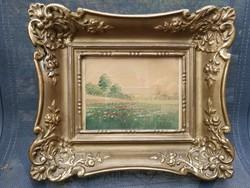 Szentgály Ferenc víz festmény, aqvarell tájkép pipacs, élethű, aprólékos mutatós blondel keretben.
