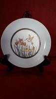 Kolibris porcelán tányér