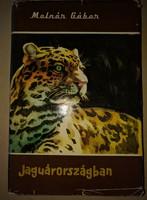 Molnár Gábor: Jaguárországban 1961