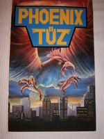 Elizabeth Forrest: Phoenix tűz c. könyvének eredeti borítófestménye 28x43 cm
