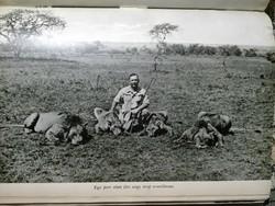 Ras Tafari Mekonnen Hailé Szelasszié orvosa, Dr. Mészáros Kálmán: Abesszínia a vadászok paradicsoma