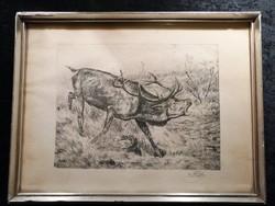 Szarvasbika rézkarc - vadászat