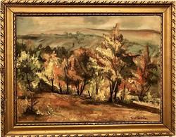 """TORDAI Székely Mihály(1840-1940) - Gyönyörű """"Erdő Park részlet"""" arany Blonde keretben"""