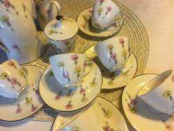 Különlegesen szép Selb Bavaria teás készlet, 6 személyes (400)