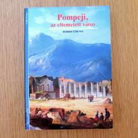 Pompeji, az eltemetett város (újszerű könyv)