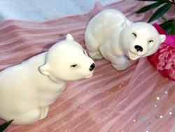 Lomonosov jegesmedve pár