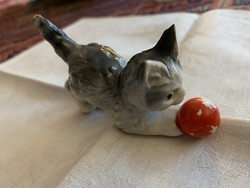 Gombolyaggal játszó kiscica