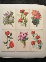 Képeslap, képeslapok
