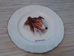 Gyönyörű Angol porcelán tányér.