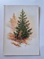 Retro karácsonyi képeslap fenyőfás levelezőlap