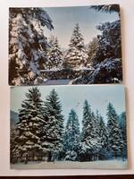 Retro karácsonyi képeslap havas fenyők 2 db