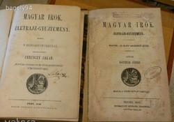 FERENCZY JAKAB - DANIELIK JÓZSEF : MAGYAR ÍRÓK - ÉLETRAJZ-GYŰJTEMÉNY 1856 , 1858