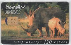 Magyar telefonkártya 0291  1998 Szélesszájú orrszarvú      50.000 Db-os