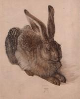 Albrecht Dürer - Fiatal mezei nyúl reprint 24.5 x 19.5 cm