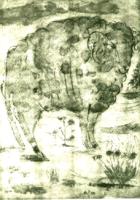 Picasso: Birka - rézkarc