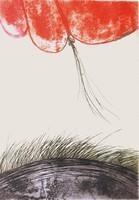 Gachold: Ellentétek, 1973 - színes rézkarc, keretezve
