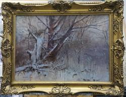 Gyönyörû téli tájkép Antalik