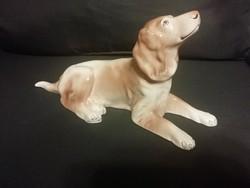 Granite large dog