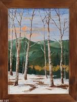 Tél vége az erdőn