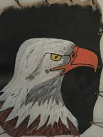 Bőrre festett sas madár képe