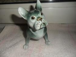 Royal Dux francia bulldog porcelán kutya gyönyörű színezéssel